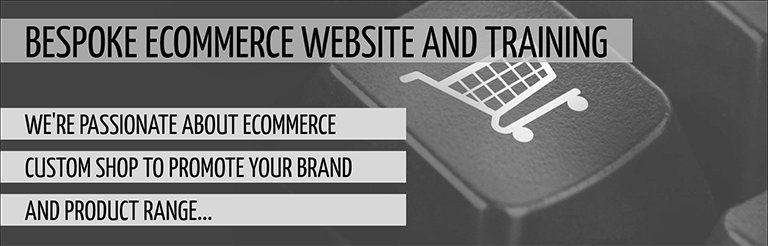 E-commerce website development and training