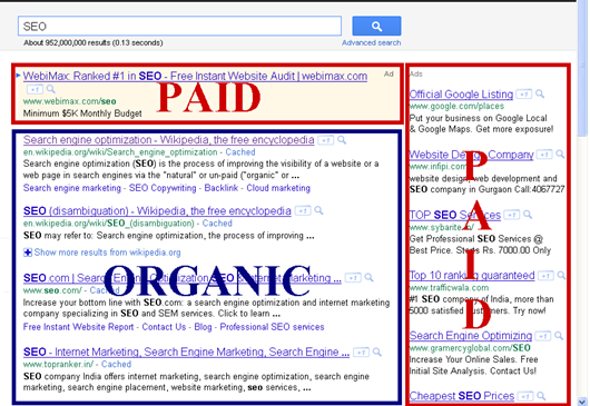 Pay per click vs Organic in SEO